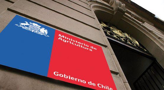 ¿Cuál es el tamaño económico del sector silvoagropecuario en Chile?