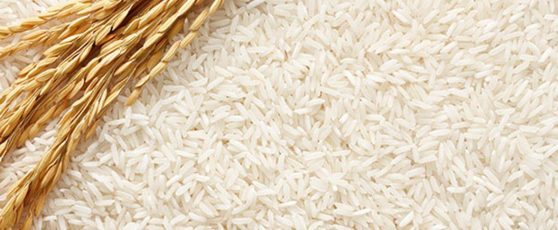 En Chile, las importaciones de arroz elaborado alcanzaron en febrero 18.450 toneladas