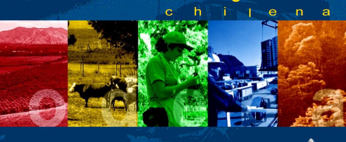 Panorama de la Agricultura Chilena 2002