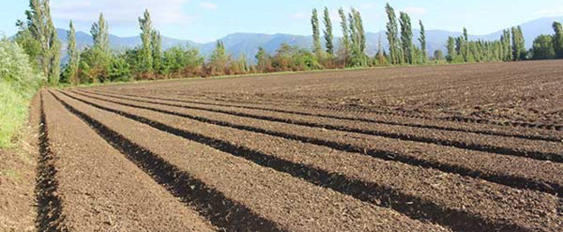 Degradación de suelos agrícolas y el SIRSD – S