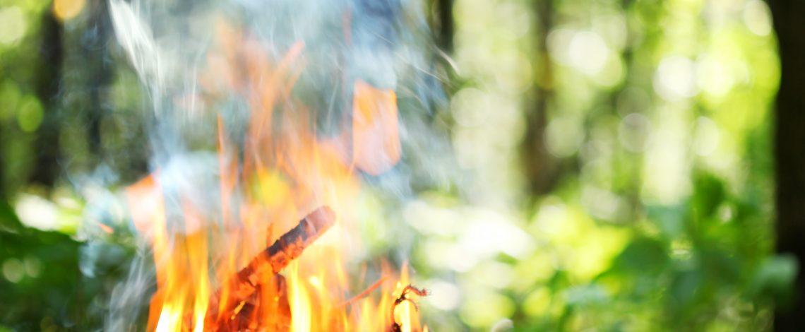 Situación diaria de incendios forestales. El número 130 es para llamar a Conaf en caso de emergencia