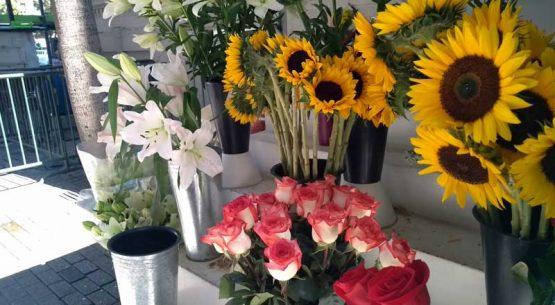 1 de noviembre: una fecha para las flores