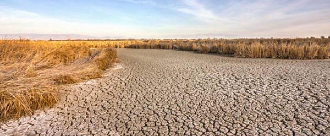 Acciones ante las distintas perspectivas ambientales en la agricultura