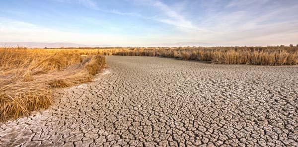 imagen de un lecho de río seco