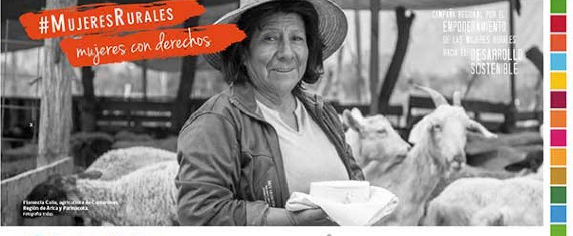 Informe final: Mujer agrícola y políticas públicas en Chile