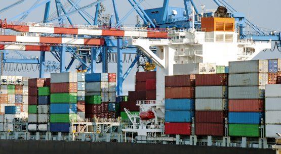 Chile: comercio exterior  de productos orgánicos
