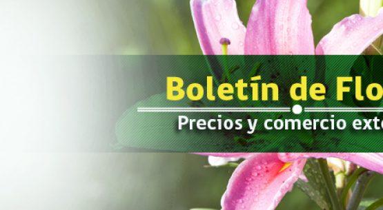 Boletín de flores: precios y comercio exterior. Abril 2014