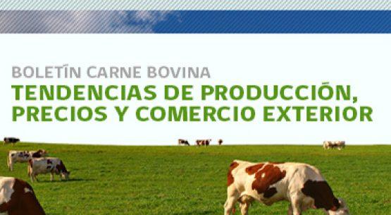Boletín carne bovina: tendencias de producción, precios y comercio exterior. Julio 2010