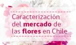 140520_Caracterización del mercado de las flores en Chile
