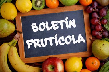 Boletín frutícola