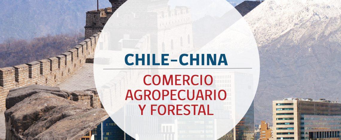 El comercio bilateral silvoagropecuario entre Chile y China, este primer semestre, alcanzó  USD 2.960 millones en exportaciones