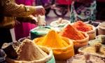 140604_Chile–India- comercio agropecuario y forestal