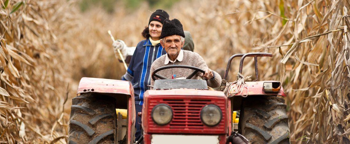 Evolución del ingreso y pobreza en hogares agrícolas de Chile. Septiembre de 2014