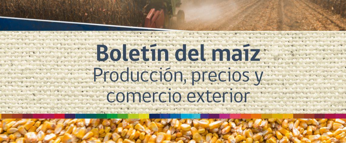 Boletín del maíz. Junio de 2015
