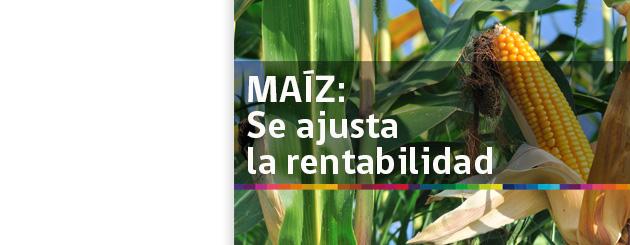 141010_MAÍZ- SE AJUSTA LA RENTABILIDAD_carrusel