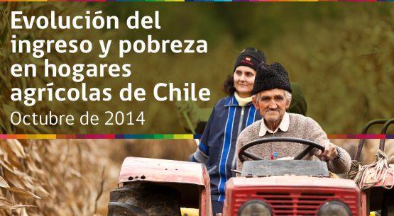 Evolución de los índices de  desigualdad y subsidios en hogares agrícolas de Chile (2000-2011). Octubre de 2014