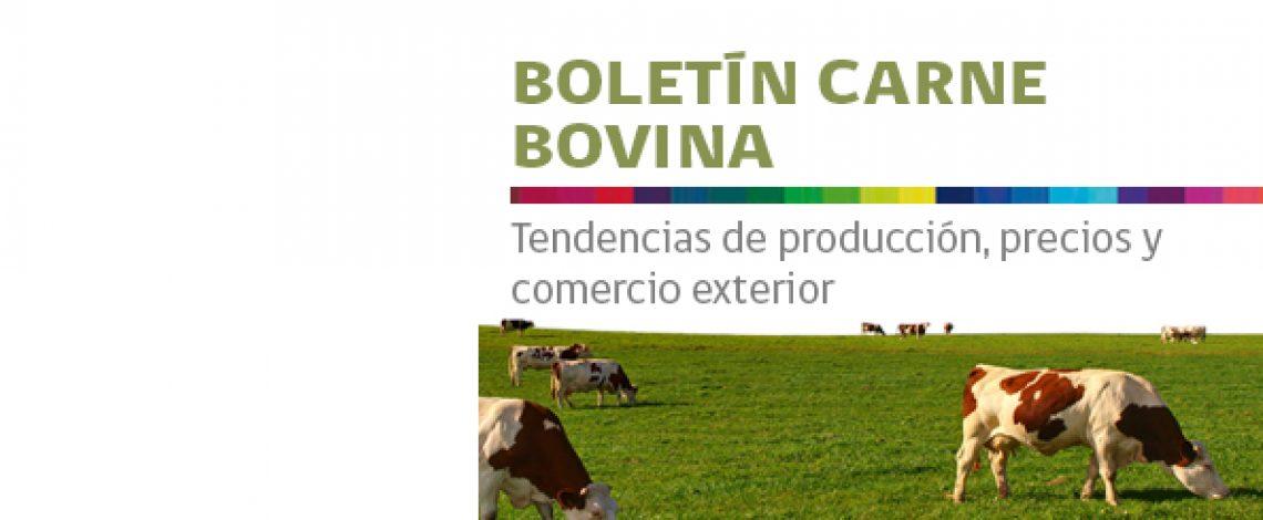 Boletín de carne bovina. Enero de 2016