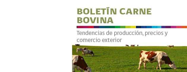 141106_boletin_carne_bovina