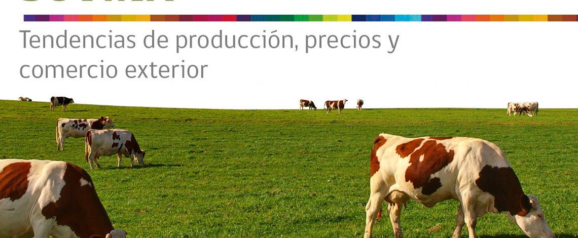 Boletín de carne bovina. Mayo de 2017