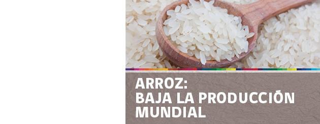 141112_ARROZ- BAJA LA PRODUCCIÓN MUNDIAL_carrusel