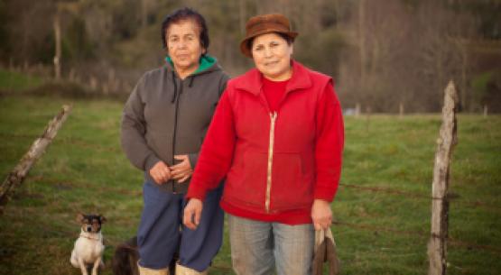 Agrogénero N°8, noviembre de 2014
