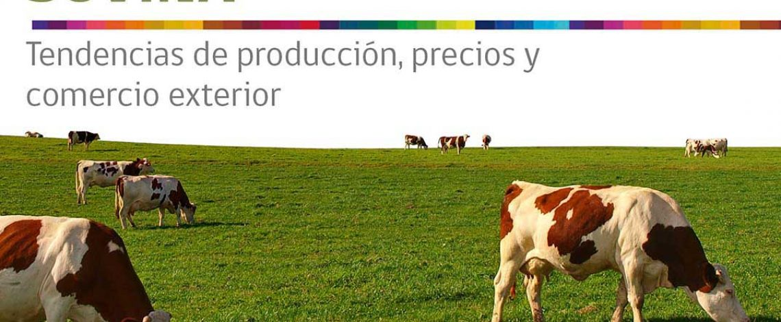 Boletín de carne bovina. Junio de 2016