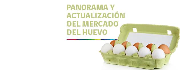 141219_PANORAMA Y ACTUALIZACIÓN DEL MERCADO DEL HUEVO_carrusel