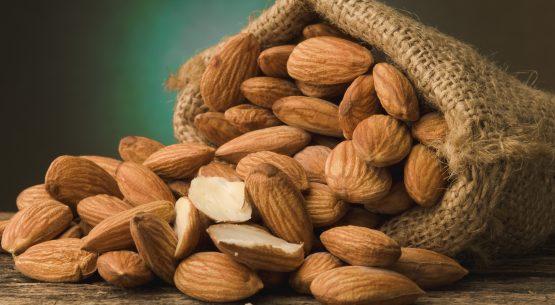 Estudio estándar de sustentabilidad para el sector productor y exportador de frutos secos