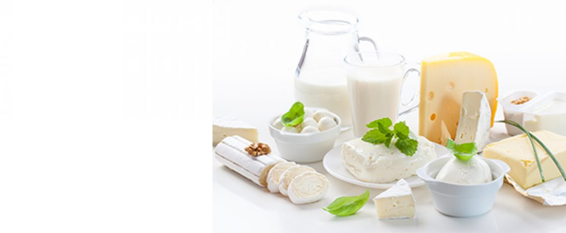 Elaboración de productos lácteos