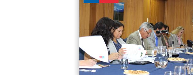 150401_comisiones_nacional_arroz