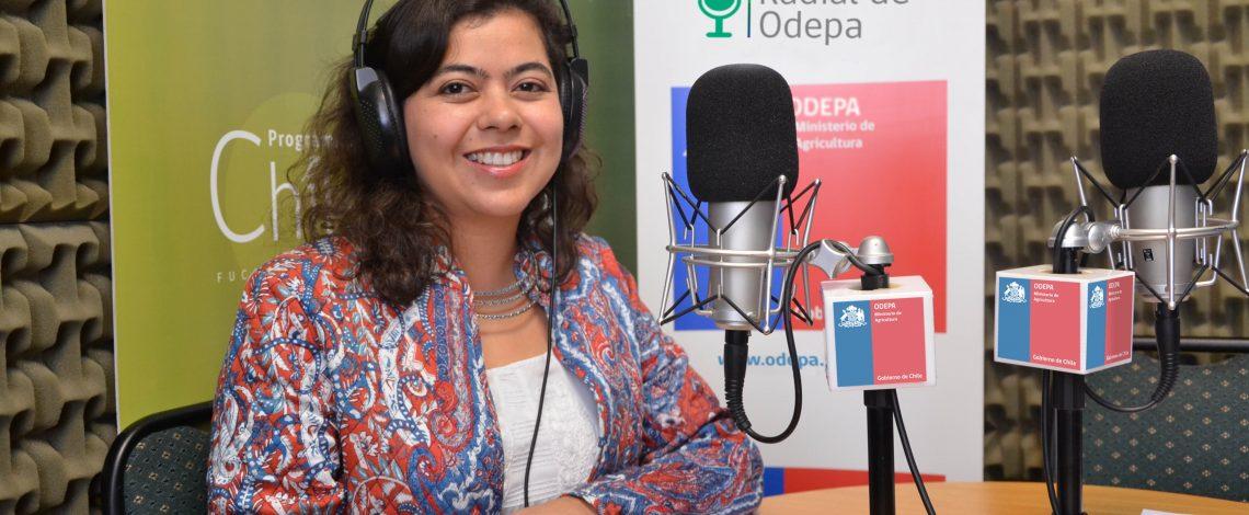 En la entrevista radial de Odepa, Romina Aguirre conversa sobre la Comisión Nacional para la Ganadería de la Carne Bovina