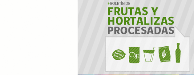 plantilla_carrusel_boletin-f_h-procesadas