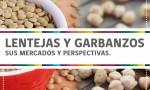 140703_LENTEJAS Y GARBANZOS- SUS MERCADOS Y PERSPECTIVAS.
