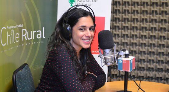 En la entrevista radial de Odepa, Javiera Pefaur habla sobre el aceite de oliva