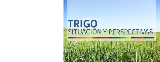 150715_trigo_carrusel
