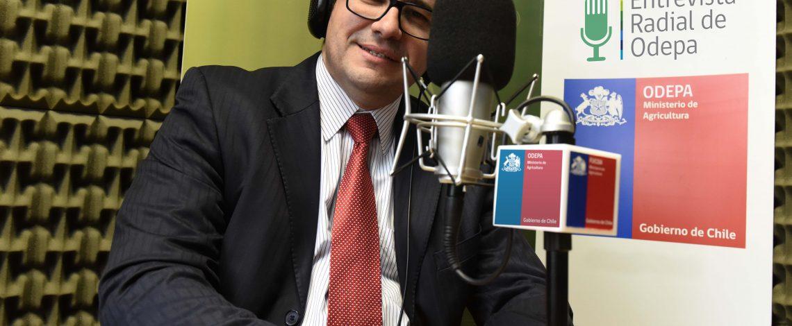 En la entrevista radial de Odepa, Camilo Navarro, director de Agroseguros habla sobre las novedades en los seguros agrícolas