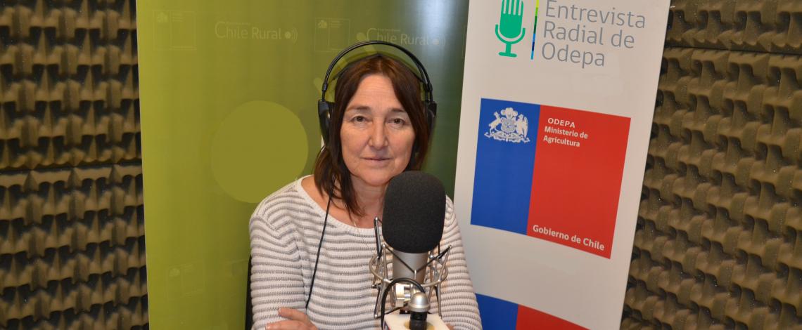 En la entrevista radial de Odepa, Pilar Eguilllor conversa sobre una reciente visita de autoridades brasileñas relacionadas con el sector orgánico