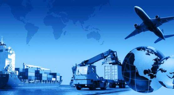 Efectos de la apertura comercial chilena en la  superficie cultivada