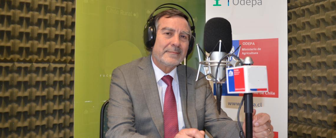 En la entrevista radial de Odepa, Alfonso Traub invita a seminario de Agroenergía