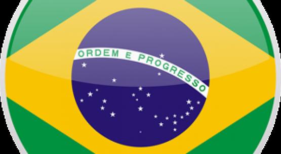 El mercado de productos orgánicos en Brasil