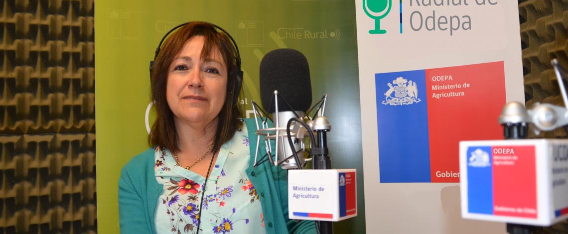 En la entrevista radial de Odepa, Laura Olea habla sobre la Cuenta Pública de Odepa 2015, que se presentará el 12 de abril