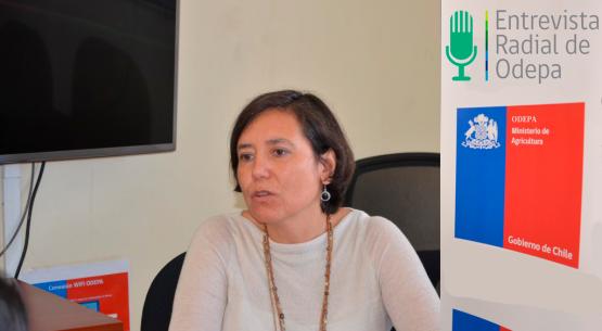 En la entrevista radial de Odepa, la directora Claudia Carbonell habla sobre el acuerdo que amplía acceso de productos orgánicos chilenos a la Unión Europea
