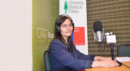 En la entrevista radial de Odepa, Liliana Yáñez analiza desde una perspectiva de género los catastros frutícolas