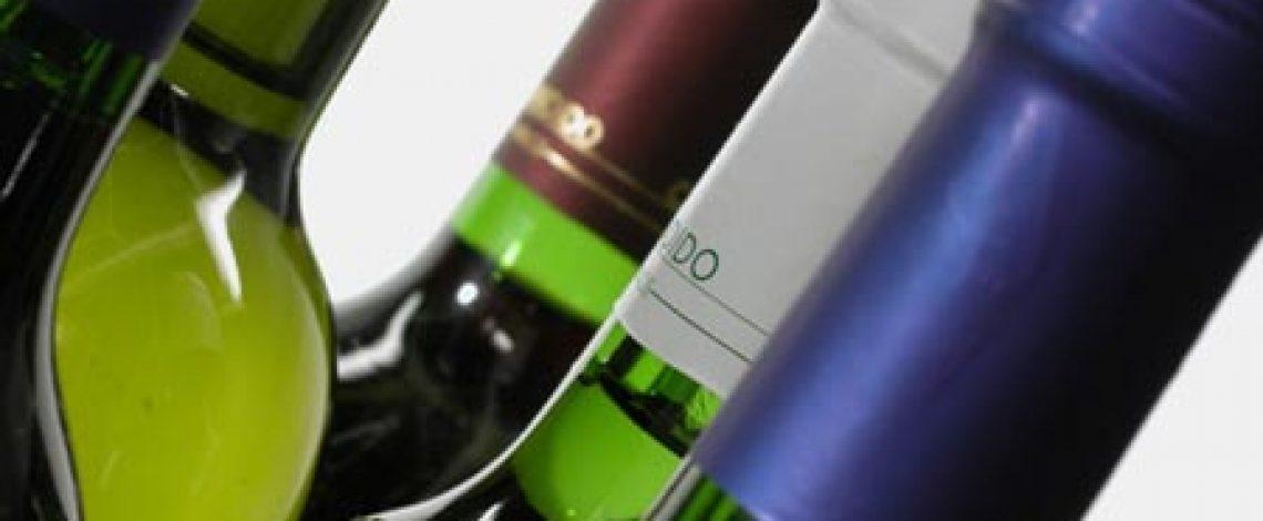 Estudio de caracterización de la cadena de producción y comercialización de la agroindustria vitivinícola