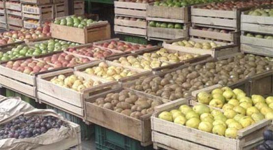 Estudio para el desarrollo de los mercados locales para mejorar el acceso a frutas y hortalizas frescas en las regiones Metropolitana y del General Libertador Bernardo O´Higgins