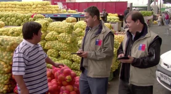 Precios mayoristas de frutas y hortalizas capturados por Odepa