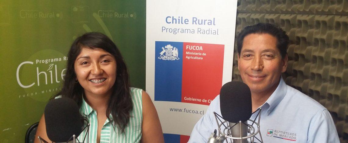 En la entrevista radial de Odepa, los reporteros de mercado de la Región Metropolitana