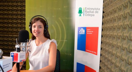 En la entrevista radial de Odepa Carolina Buzzetti habla sobre el reglamento de la uva vinífera