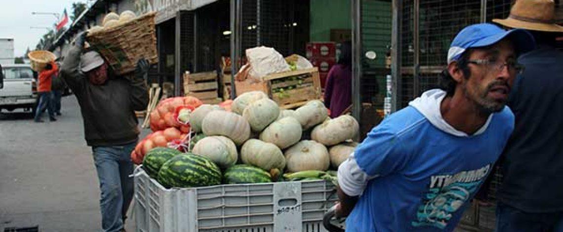 Programa de actividades para el desarrollo económico y social del canal agroalimentario tradicional