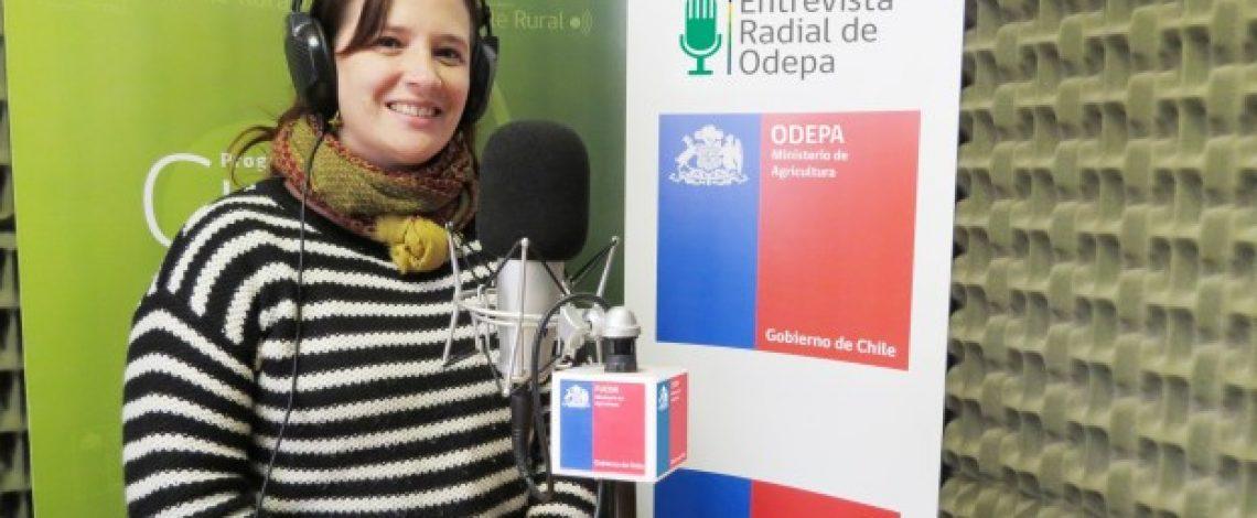 En la entrevista radial de Odepa,  Daniela Acuña cuenta sobre los planes de agricultura sostenible de la institución